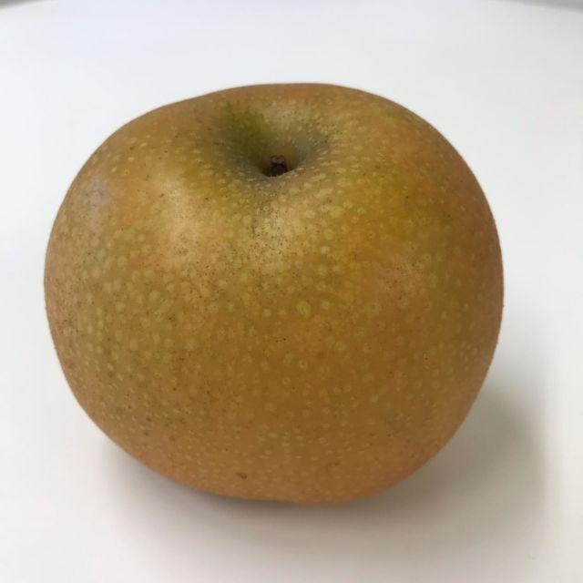 大きな梨をいただきました! 単体だと大きさが伝わらなかったかな😅秋は美味しい果物がたくさんで嬉しいですね。  本日10時、デザイン講座更新です。 今回は「余白の大切さ」。チラシやお便りを制作していて、スペースが余っちゃう時ありますよね。どうしたらバランス良くなるのかな?そんなお話です。 プロフィール蘭のURLよりホームページに飛びます。ぜひ、ご覧ください♪ ・ #梨 #フルーツ #志木市 #トリガーコーポレーション #デザイン講座 #毎週火曜日更新 #余白 #チラシ作り
